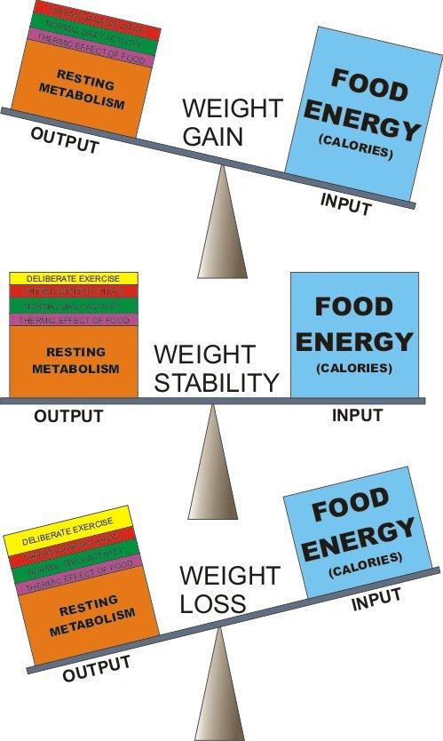 kaip numesti svorio kalorijos