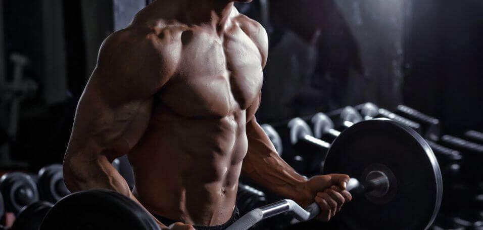 raumenų masės auginimas
