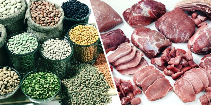 gyvuliniai baltymai augaliniai baltymai
